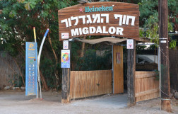 Migdalor beach in Eilat