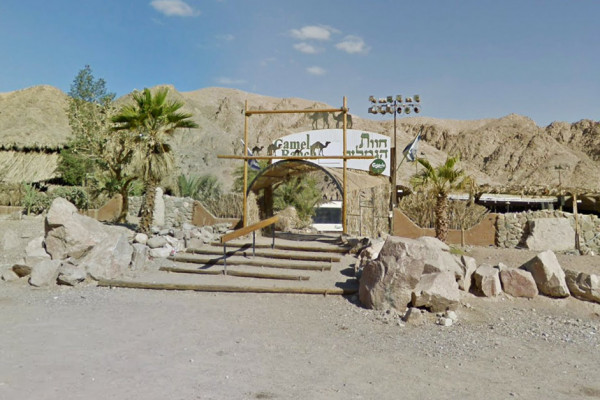 Camel Ranch in Eilat